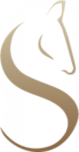 centre de soin et remise en forme pour chevaux lot-et-garonne